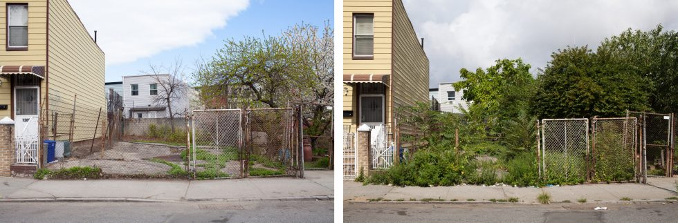 1291 Dekalb Avenue: May 2015 and August 2015