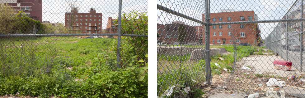 Feral Landscape Typologies (Greater Bushwick): Fence Lesions, June 2015